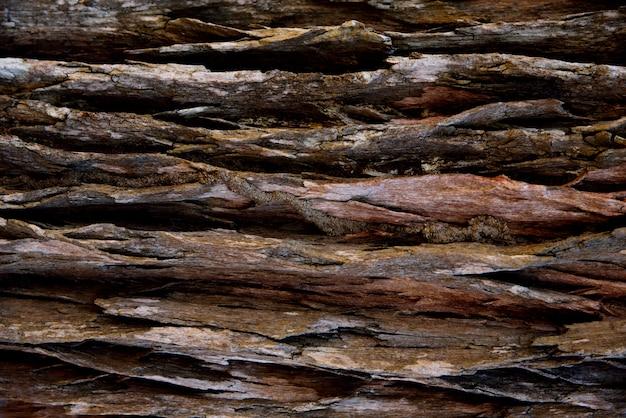 Corteccia di sfondo marrone Foto Premium