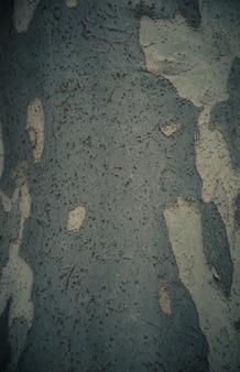 Corteccia di sfondo albero