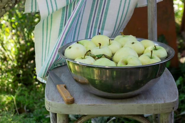Una bacinella con acqua e mele sullo sfondo di un giardino estivo. messa a fuoco selettiva.