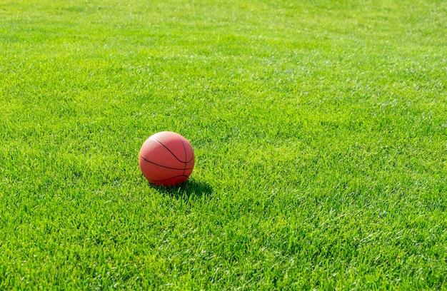 Basket su erba verde