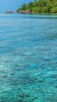 Baia con coralli sottomarini di fronte alla stazione di immersione e pensioni sull'isola di kri, raja ampat, indonesia, papua occidentale.