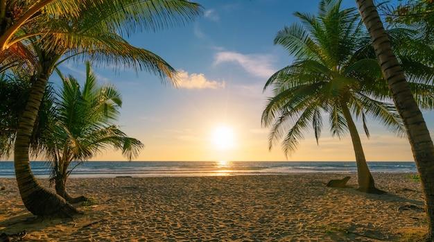 Fondo del concetto di vacanze autunnali della spiaggia cornice naturale con palme da cocco sulla spiaggia con bagliore di luce del sole bellissimo tramonto o alba sullo sfondo del paesaggio.