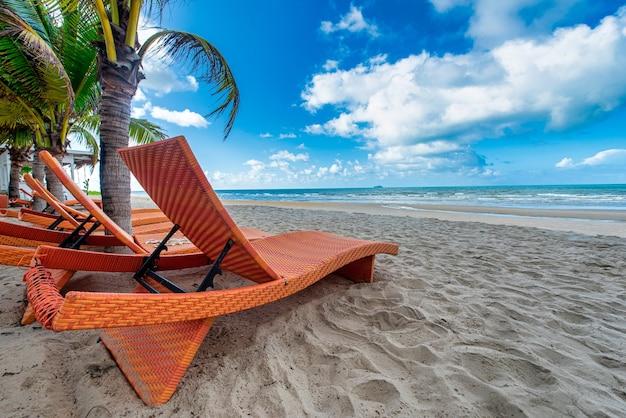 Sedie a sdraio e palme da cocco con sfondo di cielo azzurro sulla spiaggia tropicale di giorno
