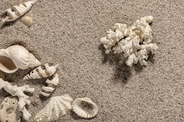 Composizione in spiaggia con conchiglie e spazio copia sabbia bianca sfondo mare e tempo libero