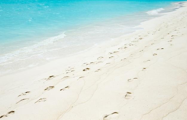 Riva della spiaggia e mare tropicale