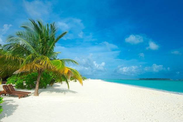 Spiaggia e mare tropicale. sfondo della natura