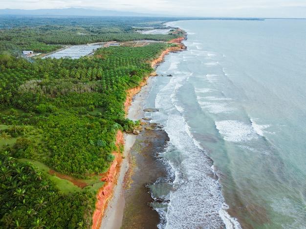 Vista della spiaggia dall'aria con un bellissimo mare blu e una bellissima foresta verde sulla costa indonesiana