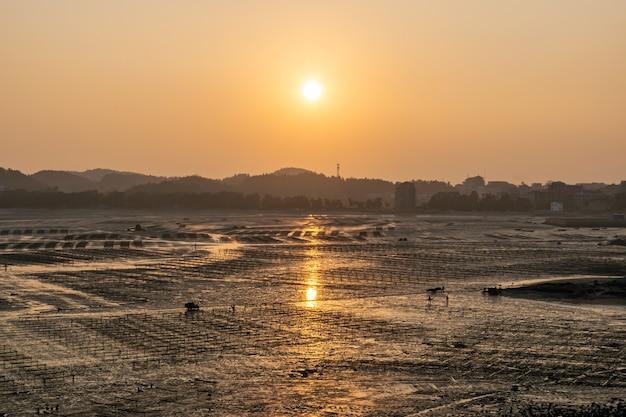 La spiaggia era dorata al sole al tramonto