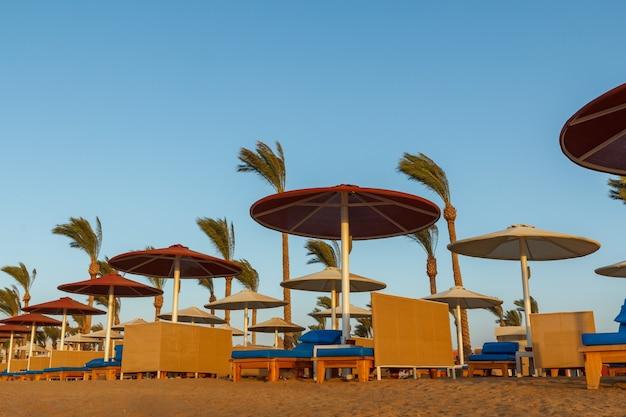 Spiaggia con ombrelloni, lettini e palme sul mar rosso in egitto