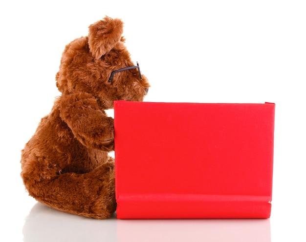 Libro di lettura del giocattolo dell'orso isolato su superficie bianca