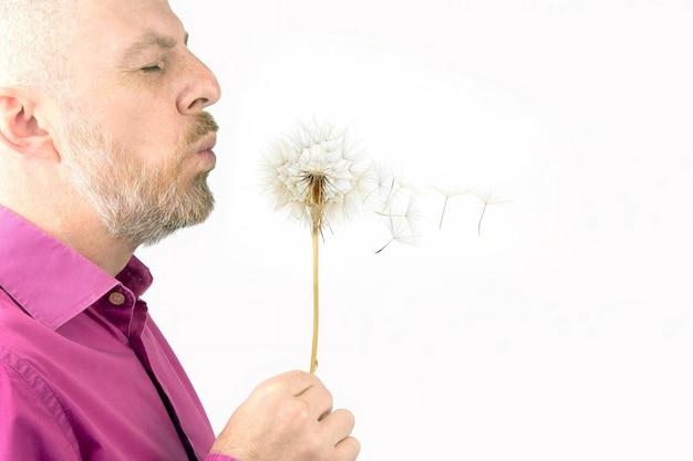 Uomo barbuto che soffia su un fiore di tarassaco. semi di tarassaco volanti.