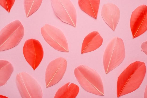 Bellissime piume rosa astratte su sfondo pastello e morbida trama di piume rosa bianche su motivo colorato, sfondo colorato, vista dall'alto di piume colorate