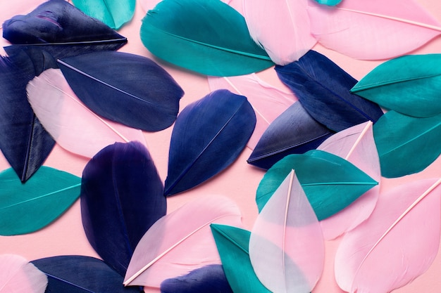Belle piume rosa astratte verdi e blu su texture di piume rosa pastello e bianco morbido sul modello colorato