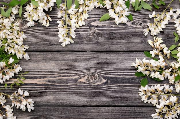Rami fioriti di bella acacia con molti fiori su fondo di legno nero