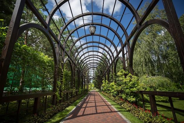 Bellissimo arco ricoperto di edera in un giardino formale