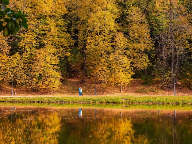 Bellissimo argine autunnale lungo il lago nel parco cittadino con alberi dorati luminosi, persone che camminano e riflessi nell'acqua.