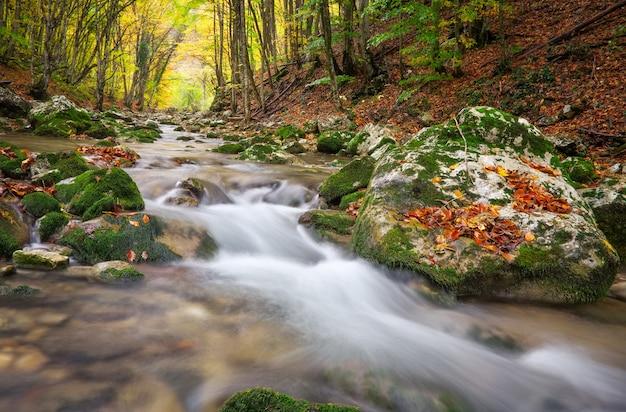 Bellissimo paesaggio autunnale con fiume di montagna e alberi colorati. foresta di montagna in crimea.