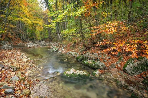 Bellissimo paesaggio autunnale con fiume di montagna e alberi colorati con foglie verdi, rosse, gialle e arancioni. foresta di montagna in crimea.