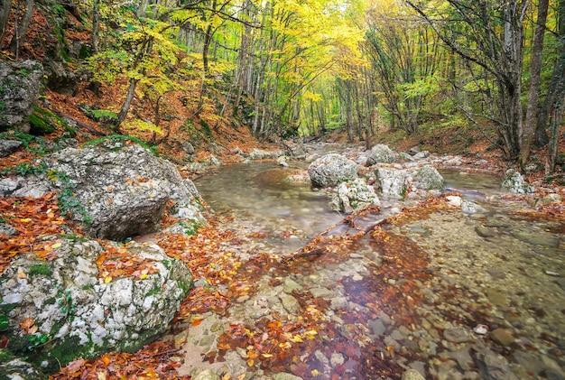 Bellissimo paesaggio autunnale con fiume di montagna e alberi colorati