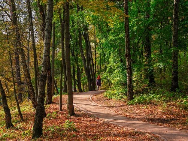 Bellissimo sentiero autunnale con una figura ambulante di una donna in un parco soleggiato. zaritsino. mosca.