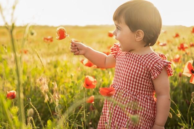 Bella neonata in vestito rosso che tiene fiore sul campo dei papaveri al tramonto estivo.