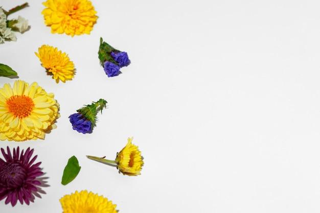 Bellissimo sfondo fatto di boccioli di fiori luminosi laici piatta