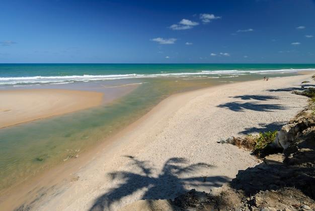 Bellissima spiaggia conde vicino a joao pessoa paraiba brasile