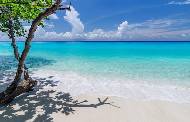 Bellissima spiaggia isole similan mare delle andamane, phang nga, phuket, thailand