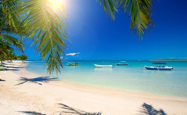 Bella spiaggia. vista della bella spiaggia tropicale con palme intorno. vacanza e concetto di vacanza.