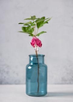 Bellissimi fiori di cuore sanguinante in un vaso di vetro turchese flora romantica