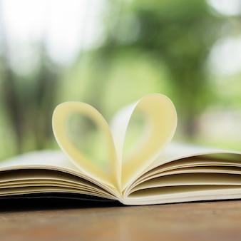 Bellissimo libro sul pavimento di legno