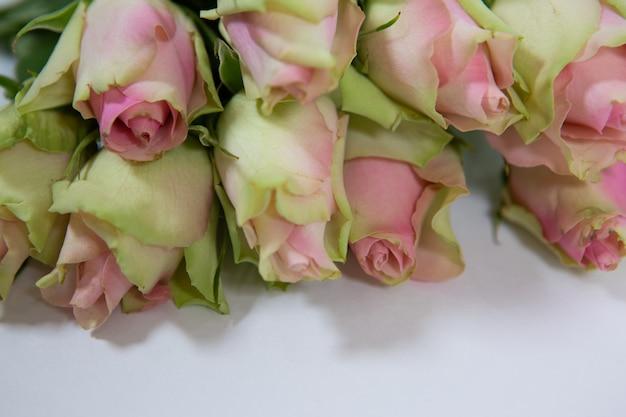 Un bellissimo bouquet di delicate rose rosa e verdi su sfondo bianco come regalo per le donne in vacanza
