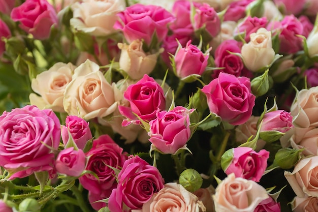 Un bellissimo bouquet di fiori piccole rose a cespuglio viola e color pesca