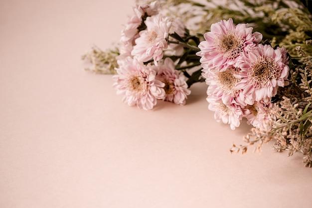 Bellissimo bouquet di fiori di crisantemo rosa su sfondo beige pallido. tendenza banner orizzontale minimalista con copia spazio per il testo.