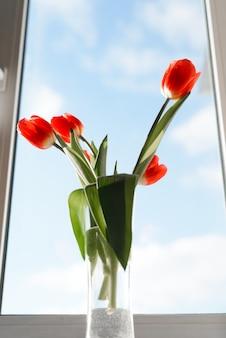 Bellissimo bouquet di tulipani rossi in un vaso su un davanzale contro un cielo blu al chiuso, vista dal basso.