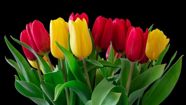 Bellissimo bouquet di tulipani rossi e gialli