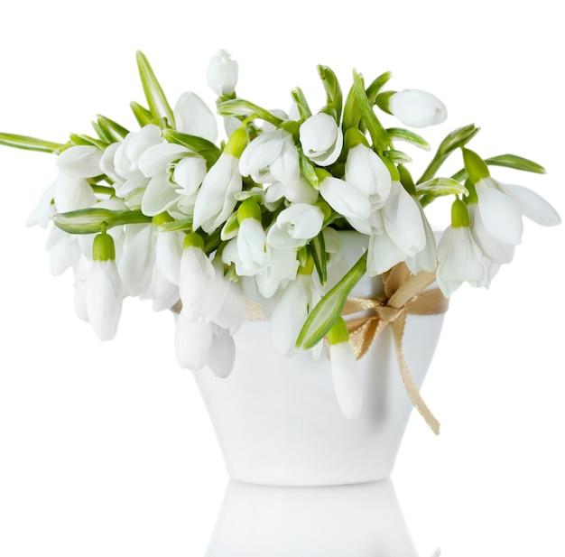 Bellissimo bouquet di bucaneve in vaso con fiocco isolato su bianco