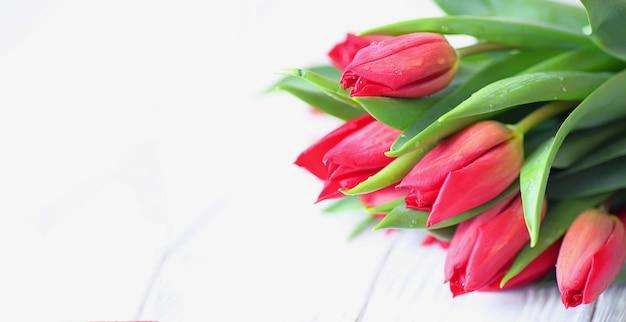 Bellissimo bouquet con tulipani viola da vicino lo spazio della copia
