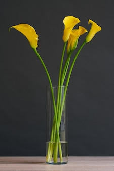 Bellissimo bouquet di fiori gialli di calla in un vaso.