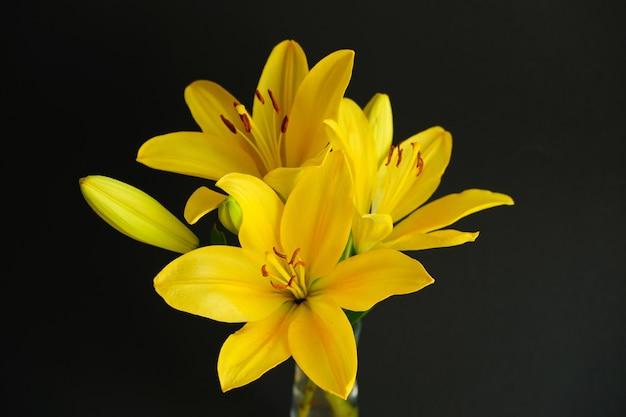 Bellissimo bouquet di gigli gialli su fondo nero