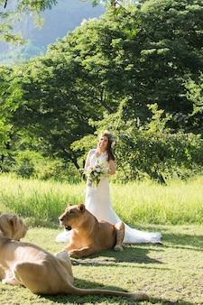Bella sposa e una leonessa nella pittoresca natura