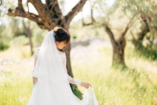 Bella sposa in abito da sposa tenero con lungo velo da sposa nell'uliveto.