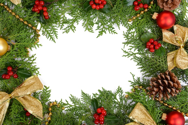 Bellissimo bordo natalizio di abete e vischio su sfondo bianco