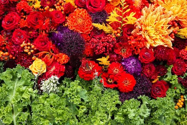 Bellissimi fiori autunnali colorati