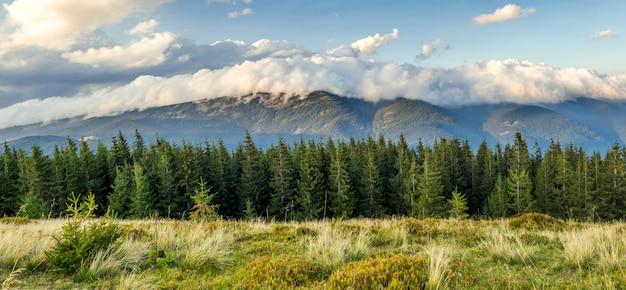 Belle drammatiche nuvole bianche sulle montagne. forest hills nelle montagne dei carpazi. ucraina.
