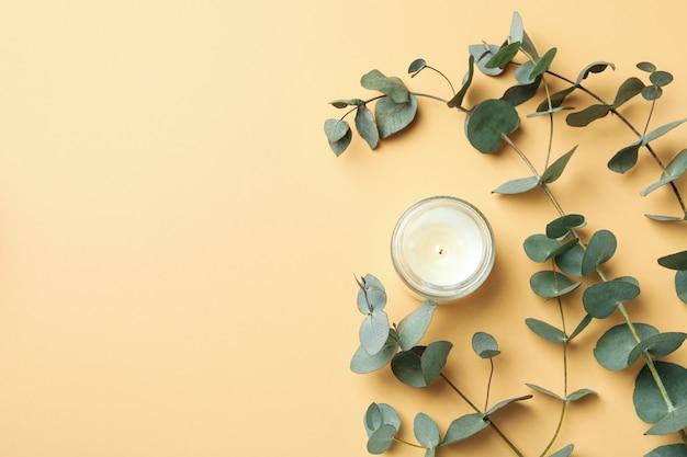 Bellissimo eucalipto e candela su sfondo beige