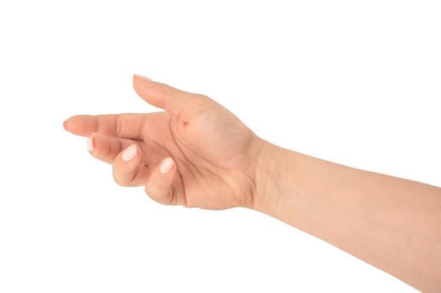 Bella mano femminile con pelle matura, palmo aperto in su. uno spazio vuoto per un oggetto tenuto dalla mano di una donna. mani che tengono, prendi o prendi qualcosa