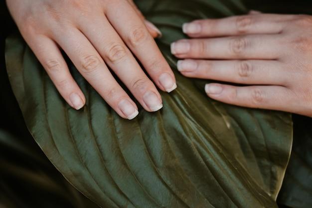Bella mano femminile con unghie naturali su sfondo di foglie verdi. concetto di cura delle mani.