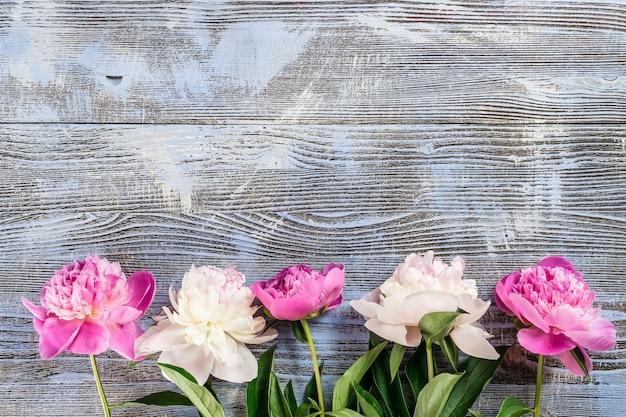 Bellissimo sfondo floreale con fiori di peonia fresca su tavole di legno