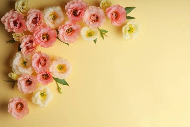 Bella composizione floreale su uno sfondo colorato con posto per il testo